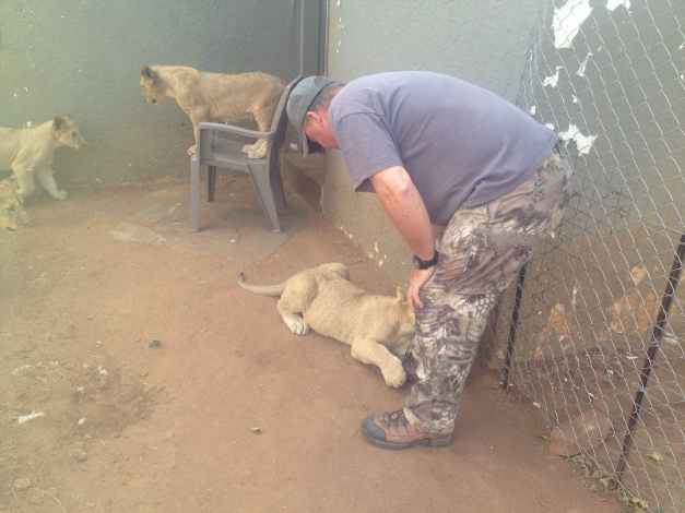 Joe Playing with little lions