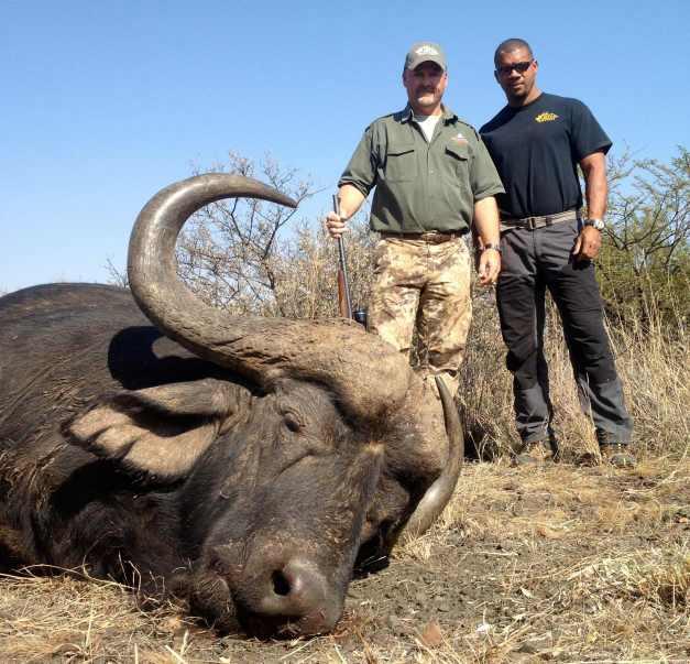 Monster Cape Buffalo