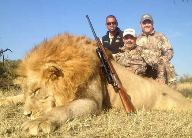 Finally got a shot at this huge lion